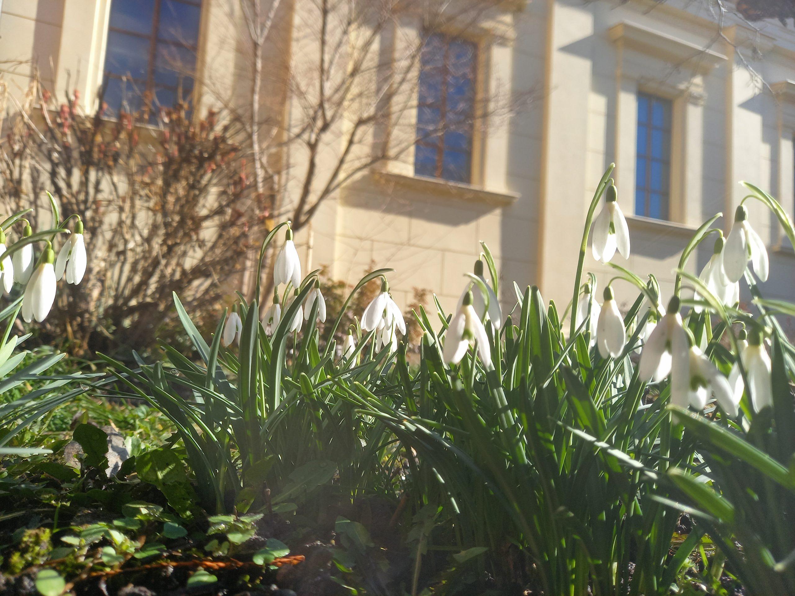 Sborový program na jaře